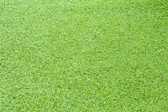 Struttura dell'erba Fotografia Stock Libera da Diritti