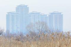 Struttura dell'erba asciutta del prato con i blocchetti del fogy ed il cielo bianco Inverno Fotografia Stock