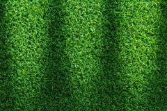 Struttura dell'erba o fondo dell'erba erba verde per progettazione di massima del campo da golf, del campo di calcio o del fondo  Fotografia Stock Libera da Diritti