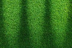 Struttura dell'erba o fondo dell'erba erba verde per progettazione di massima del campo da golf, del campo di calcio o del fondo  Immagine Stock