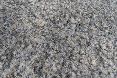 Struttura della briciola del granito Superficie granulosa grigia della roccia Granito bianco non lucidato come fondo, struttura p immagini stock