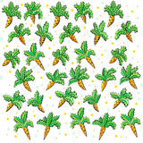 Struttura della carota Illustrazione Vettoriale