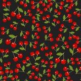 Struttura della ciliegia rossa Fotografia Stock Libera da Diritti