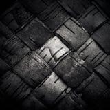 Struttura della corteccia di betulla tessuta Fotografie Stock