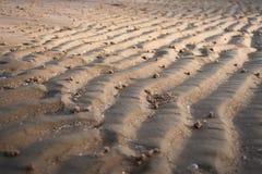 Struttura della curva della sabbia Immagini Stock Libere da Diritti