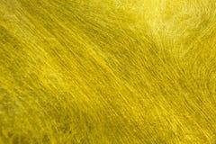 Struttura della fibra dell'oro Immagine Stock Libera da Diritti