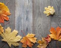 Struttura della foglia di autunno per le parole e le iscrizioni, spazio della copia Fotografia Stock Libera da Diritti