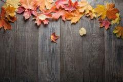Struttura della foglia di autunno per le parole e le iscrizioni, spazio della copia Fotografie Stock Libere da Diritti