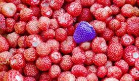 Struttura della frutta della fragola Immagini Stock