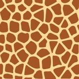Struttura della giraffa Immagini Stock
