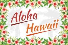 Struttura della giungla dell'Hawai di slogan aloha Immagini Stock Libere da Diritti