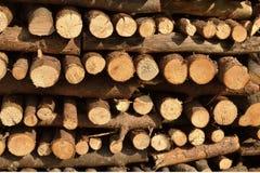 Struttura della legna da ardere di Splitted Immagini Stock
