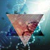 Struttura della molecola del DNA su un fondo verde Fondo di vettore di scienza Immagini Stock