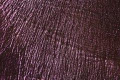 Struttura della palma con pittura porpora Fotografie Stock Libere da Diritti