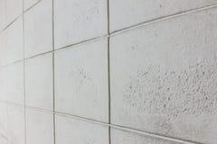 Struttura della parete del cemento del blocchetto del mattone Immagini Stock