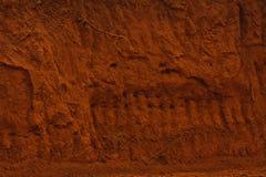 Struttura della parete della terra Fotografie Stock Libere da Diritti