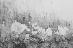 Struttura della parete di Grung Immagini Stock