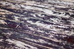 Struttura della parete di legno Immagini Stock