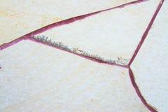 Struttura della parete di pietra per fondo Fotografie Stock Libere da Diritti