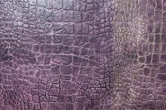 Struttura della pelle del coccodrillo Immagine Stock