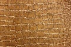 Struttura della pelle del coccodrillo e modello dorati, primo piano Immagini Stock