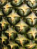 Struttura della pelle dell'ananas Fotografia Stock