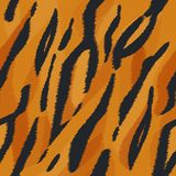 Struttura della pelliccia della tigre Fotografia Stock