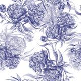 Struttura della peonia dell'acquerello del Grisaille royalty illustrazione gratis
