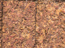 Struttura della pietra pomice Fotografia Stock