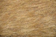 Struttura della pila del fieno nel campo di agricoltura Immagine Stock