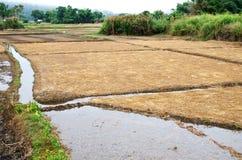Struttura della pila del fieno nel campo di agricoltura Immagini Stock Libere da Diritti