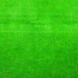 Struttura della priorità bassa dell'erba verde Fotografia Stock