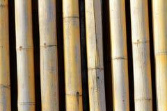 Struttura della priorità bassa di bambù Immagini Stock Libere da Diritti