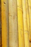 Struttura della priorità bassa di bambù Fotografia Stock