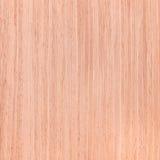Struttura della quercia, serie di legno di struttura Immagini Stock Libere da Diritti