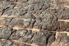 Struttura della roccia della montagna Fotografia Stock