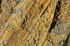 Struttura della roccia della spiaggia, dalla costa ovest della Scozia immagini stock