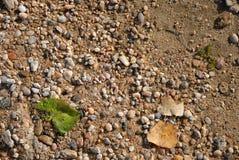 Struttura della sabbia Immagini Stock