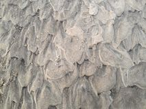 Struttura della sabbia della spiaggia Fotografie Stock Libere da Diritti