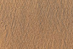 Struttura della sabbia fine gialla, molle, liscia, con i chip ambrati sulla spiaggia fotografie stock libere da diritti