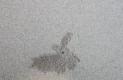 Struttura della sabbia per fondo Fotografia Stock