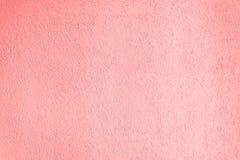 Struttura della superficie della parete coperta di gesso decorativo del tipo del tarlo Fotografia Stock
