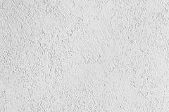Struttura della superficie della parete coperta di gesso decorativo del tipo del tarlo Fotografia Stock Libera da Diritti