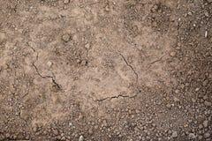 Struttura della terra pronta per piantare Terra secca ed umida, la vista dalla cima fotografia stock libera da diritti