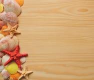 Struttura delle conchiglie e delle stelle marine su fondo di legno Fotografie Stock Libere da Diritti