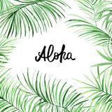Struttura delle foglie di palma dell'acquerello con testo disegnato a mano Aloha Immagini Stock
