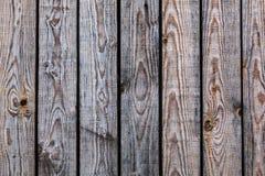 Struttura delle plance Fotografia Stock