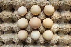 Struttura dello scaffale delle uova Immagine Stock