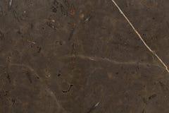 Struttura dettagliata di marmo marrone di lusso nella f modellata naturale Fotografia Stock Libera da Diritti
