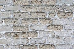 Struttura dettagliata Muro di mattoni Grungy Priorità bassa dell'annata Immagini Stock